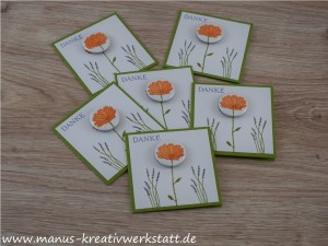 Gänseblümchen, Button, Stampin'Up!
