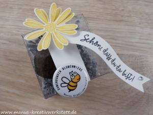 Swap, Stampin'Up!, Schmetterlingsgruß, Gänseblümchengruß, transparente Mini-Geschenkschachtel