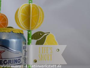 Lemon Zest, Elementstanze Zitrone, Stampin'Up!