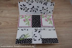 Blüten, Blätter & Co, Blütenfantasie, Blütentraum, Stamin'Up!